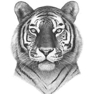 The Tiger by kodamorkovkart