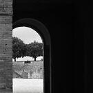 Siena Fortezza by Jon Julian
