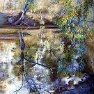Sunday Creek Reflections by Lynda Robinson