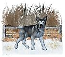 January Puppy .. playing in the snow by LoneAngel