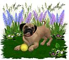 Febuary Puppy .. playing in the garden by LoneAngel