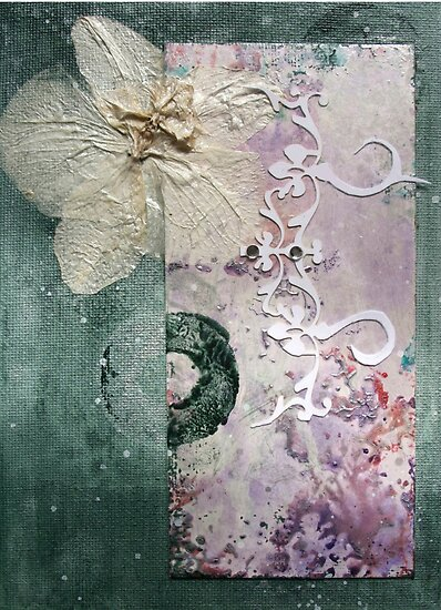 The Moth Orchid by Jay Taylor