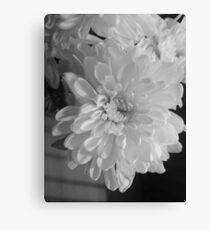 White Bloom (Balck And White) Canvas Print