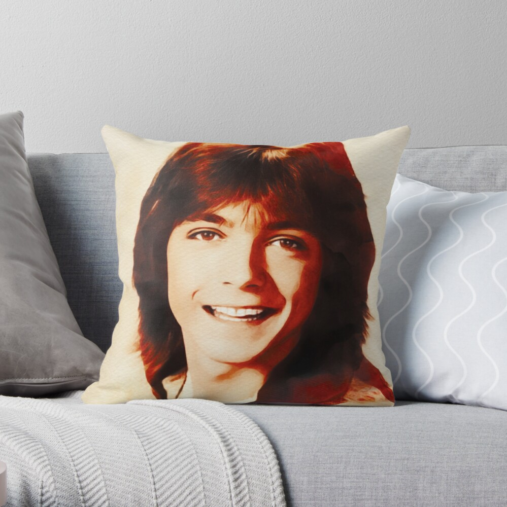 Coussin « David Cassidy, Star d'Hollywood»