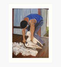 Shearing at Bookham, NSW Art Print