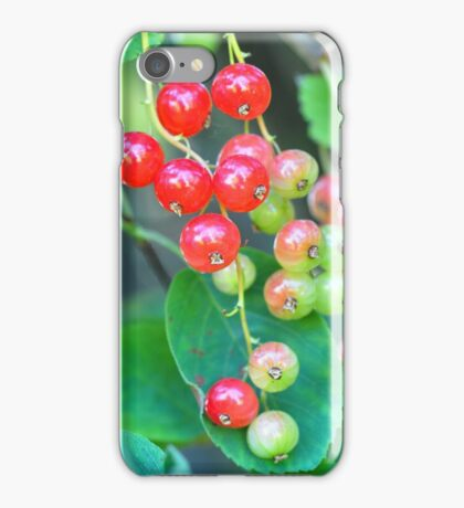 Red currants iPhone Case/Skin