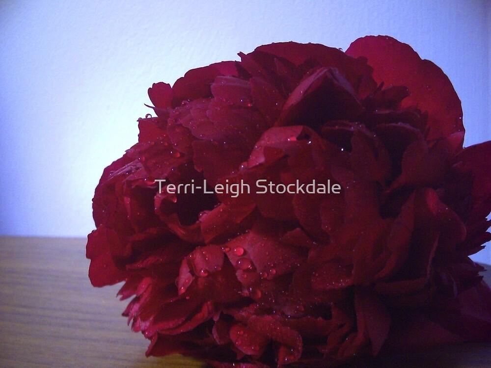 Red Flower by Terri-Leigh Stockdale