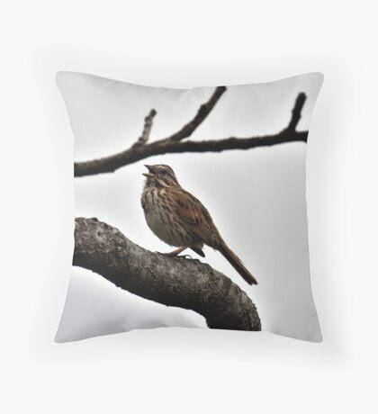 Singing Sparrow Throw Pillow