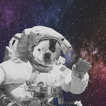 SPACE DOG by MUMtees