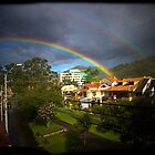 A Good Soaking Deserves A Double Rainbow by Al Bourassa