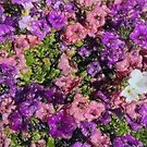 Pattern di fiori by marcocreazioni