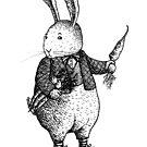 Rabbit - Boy by HanaStupica