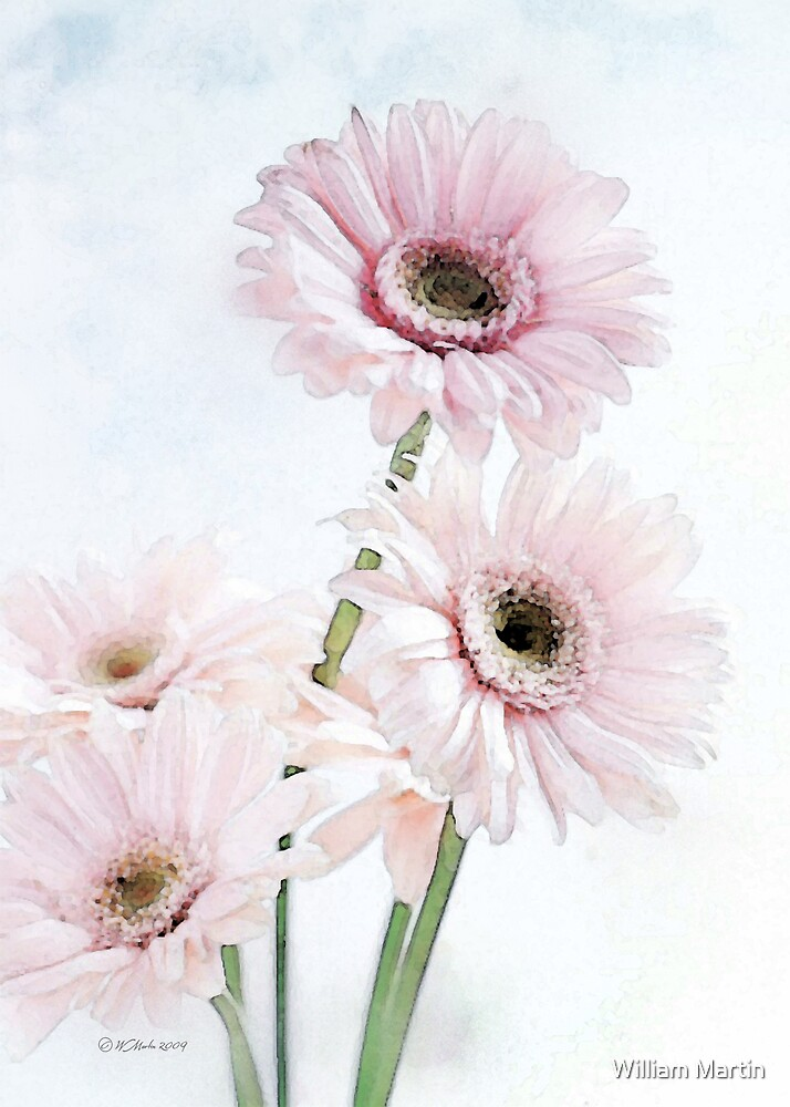 A Touch of Pink by William Martin