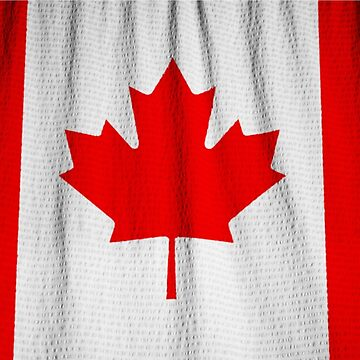 Canadian flag the Maple Leaf Canada Souvenir by peter2art