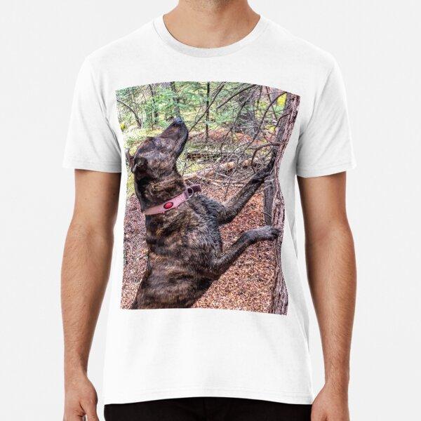 Squirrel Chasing Plott Hound Premium T-Shirt