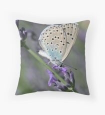 Large Blue Butterfly on Lavender Throw Pillow
