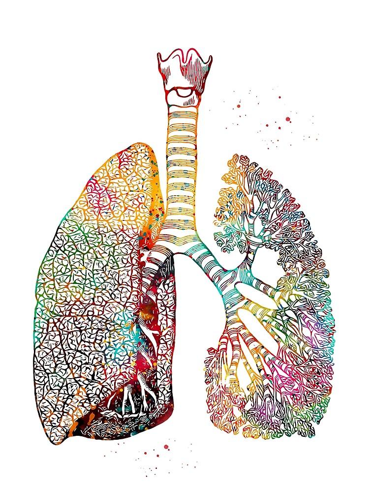 Lungs Art by erzebetth