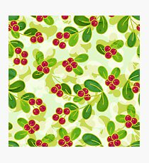 Cranberry Fruit Pattern on Green Photographic Print