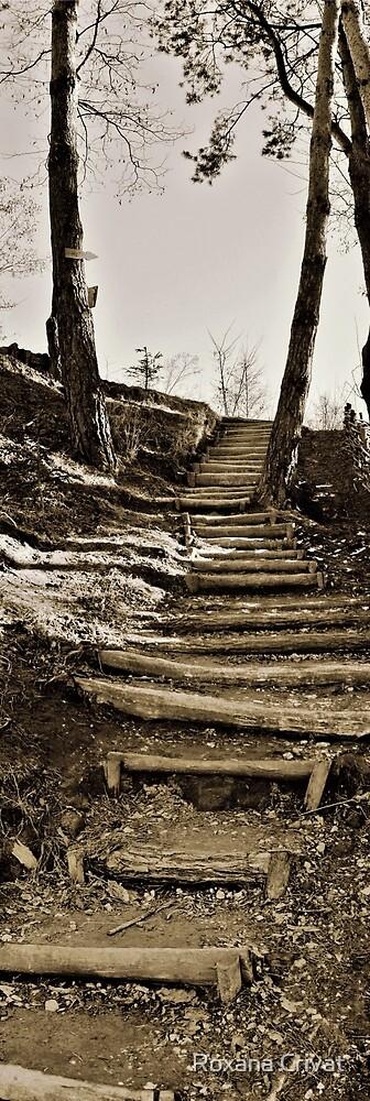 walkway by Roxana Crivat