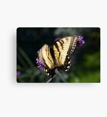 Butterfly Silhouette on a Flower Canvas Print