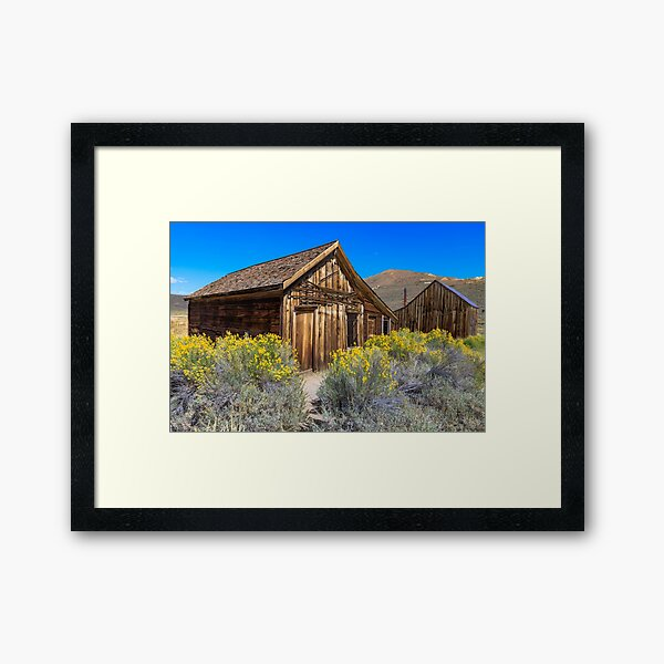 Bodie Looks Great with Flowers Framed Art Print
