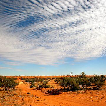 Desert Tracks by tanjents