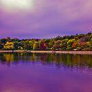 Brookline Reservoir park  by LudaNayvelt