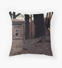 Bushfire Post Throw Pillow