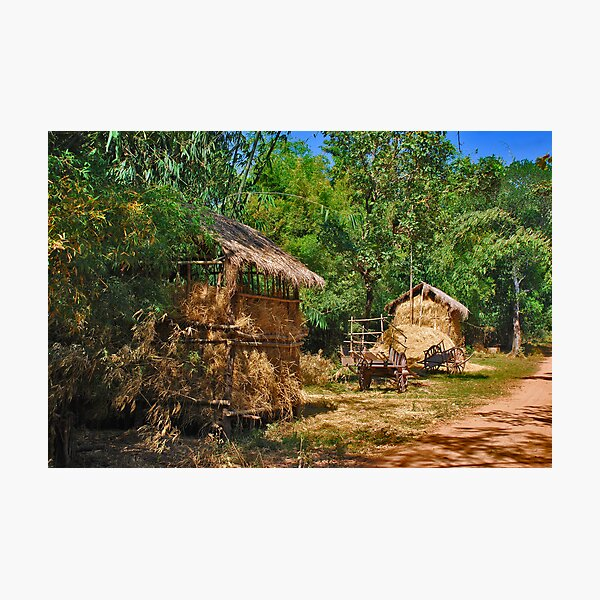 Rural Cambodia Photographic Print