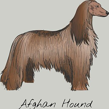 Afghan Hound Vintage Style Drawing by efomylod