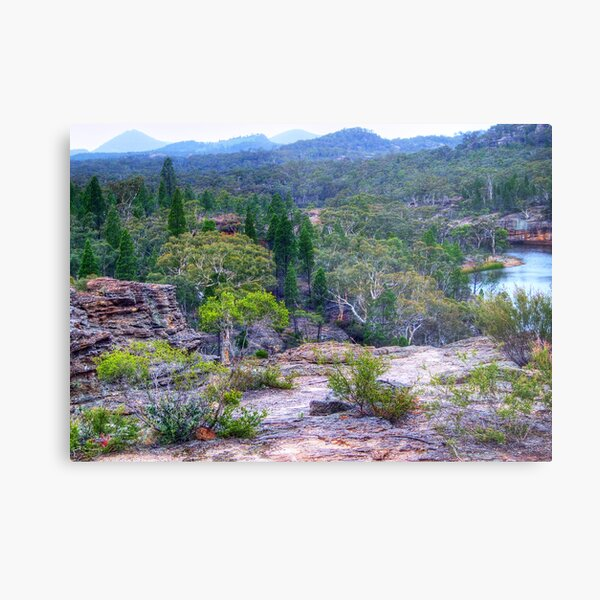 Wollemi National Park Metal Print