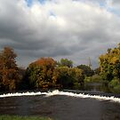The Weir at Cahir by Martina Fagan