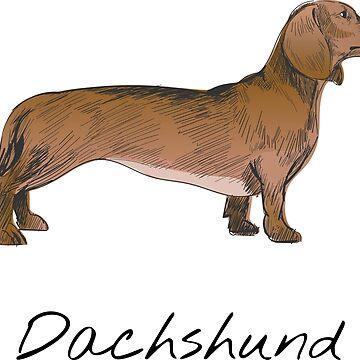 Dachshund Vintage Style Drawing by efomylod