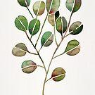 Silber Dollar Eukalyptus - grüne Palette von Cat Coquillette