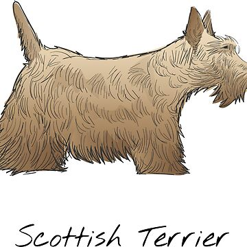 Scottish Terrier Vintage Style Drawing by efomylod