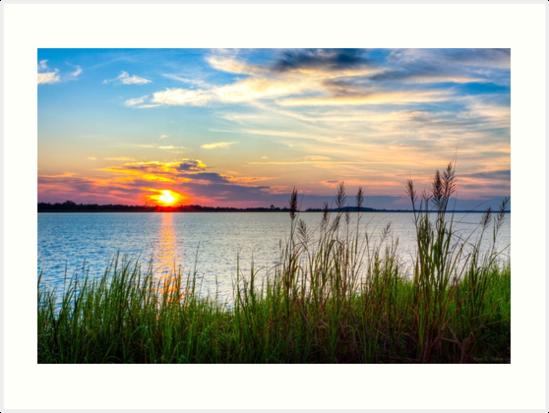 Savannah River Sunrise by Mark Tisdale