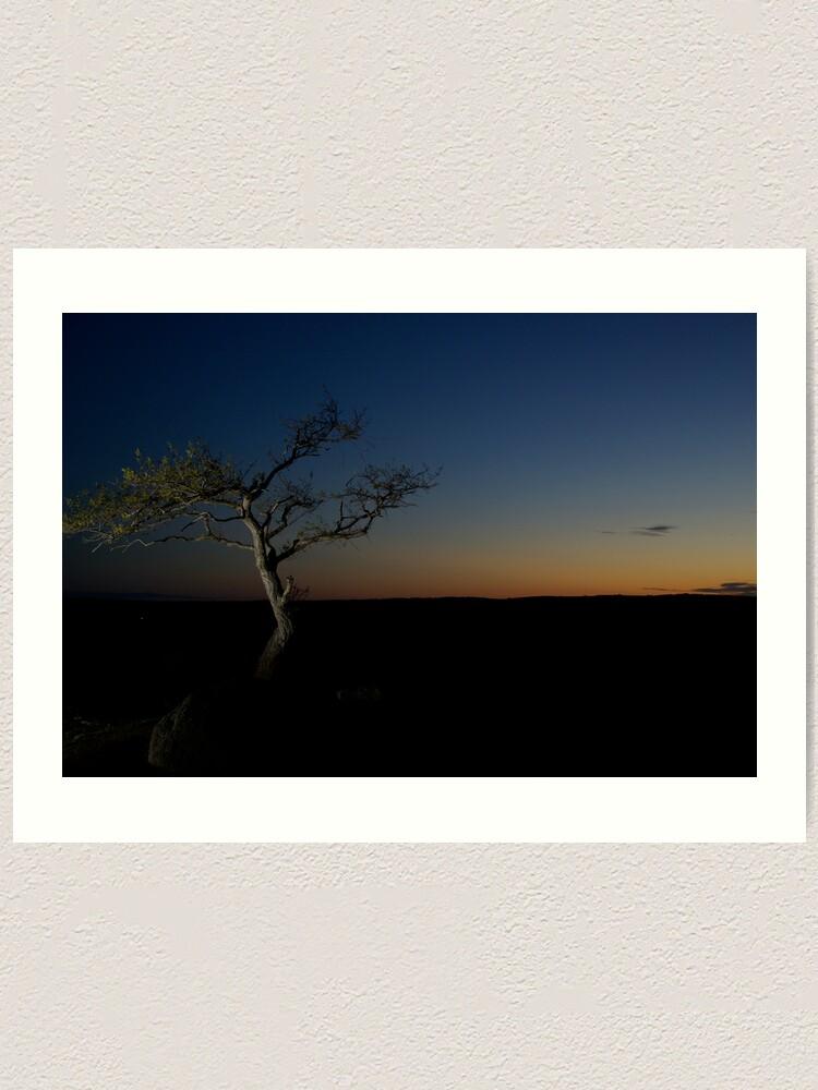 Alternate view of Sunset Season Art Print
