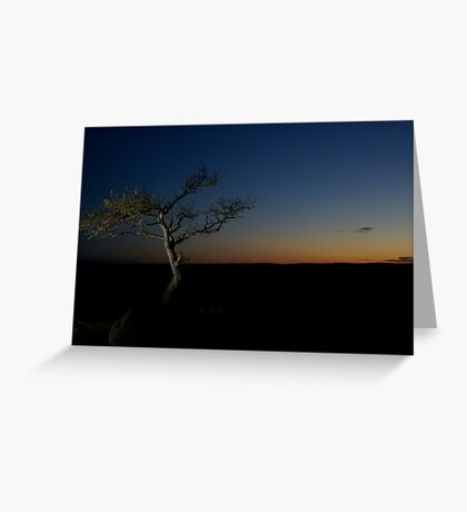 Sunset Season Greeting Card