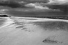 Windy Norfolk Beach by Andy Freer