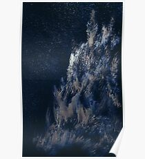WDVMM - 0457 - Moonlight and Trees Poster