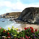 Looking across St Agnes Beach to Star Beach and onto Trevellas Beach, Cornwall UK by DeborahDinah