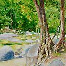 Mossman River in Far North Queensland by Dai Wynn