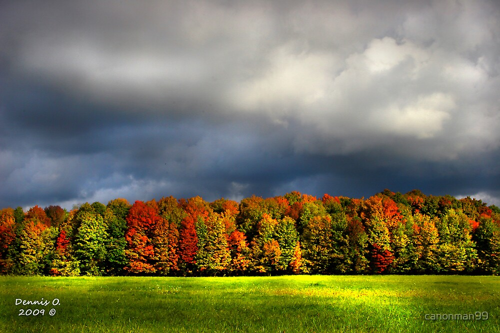 """""""Clouds of Fall""""  #4 by canonman99"""