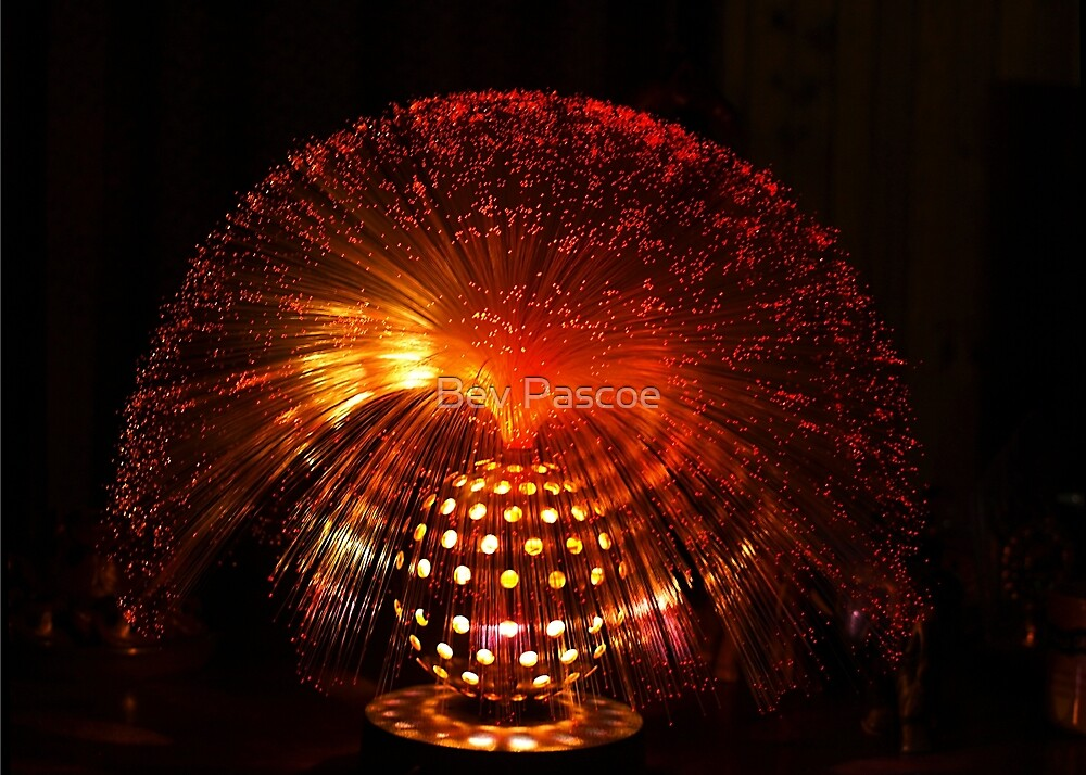 Red Fibre Optic Lamp by Bev Pascoe