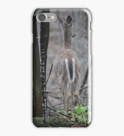Deer Looks in Ravine iPhone Case/Skin