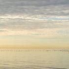 Sky Tear with Birds by Georgia Mizuleva