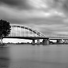 A Tree and a Bridge. by VanOostrum
