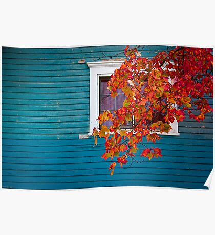 Cottage Colors Poster
