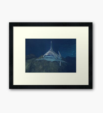 Here Is To Looking At You Framed Print