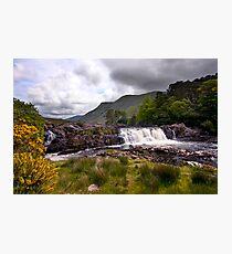 Ashleigh Falls Photographic Print